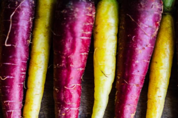 Лилав морков – не просто друг цвят