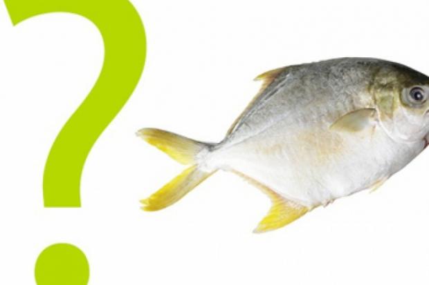 Риба и морски дарове - калории и хранителна стойност
