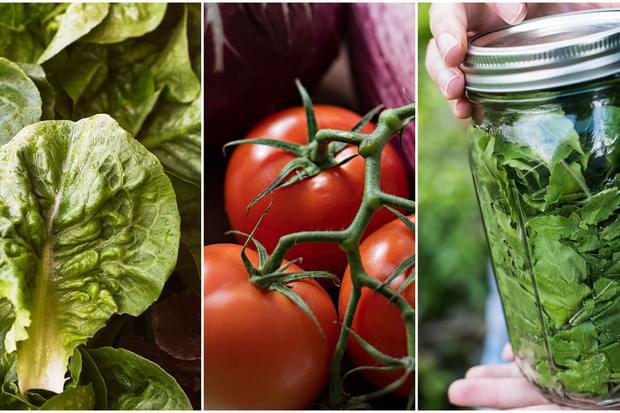 Как да запазим свежестта на плодовете и зеленчуците?