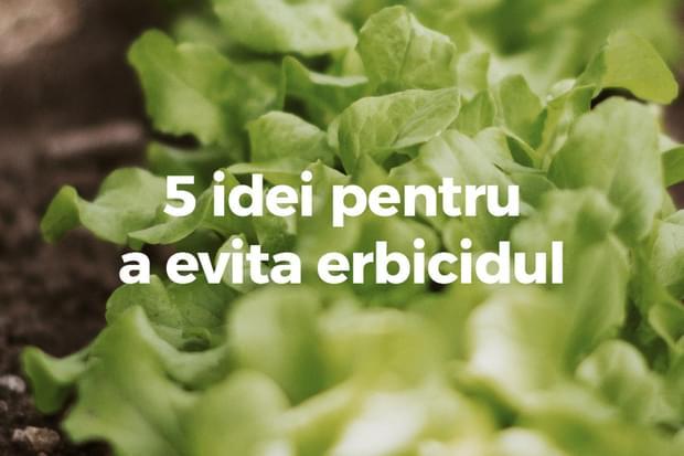 5 idei pentru a evita erbicidul