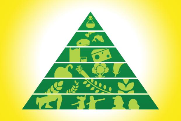 Cum completăm piramida alimentelor sănătoase?