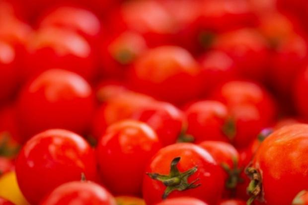 Ля Томатина – помидорная битва
