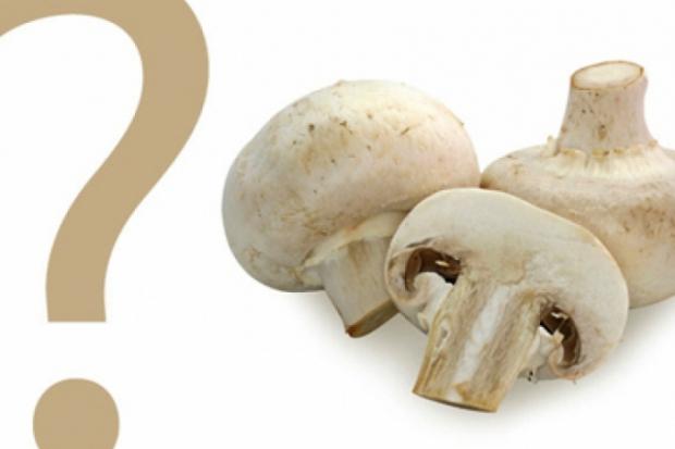 Кількість калорій в грибах